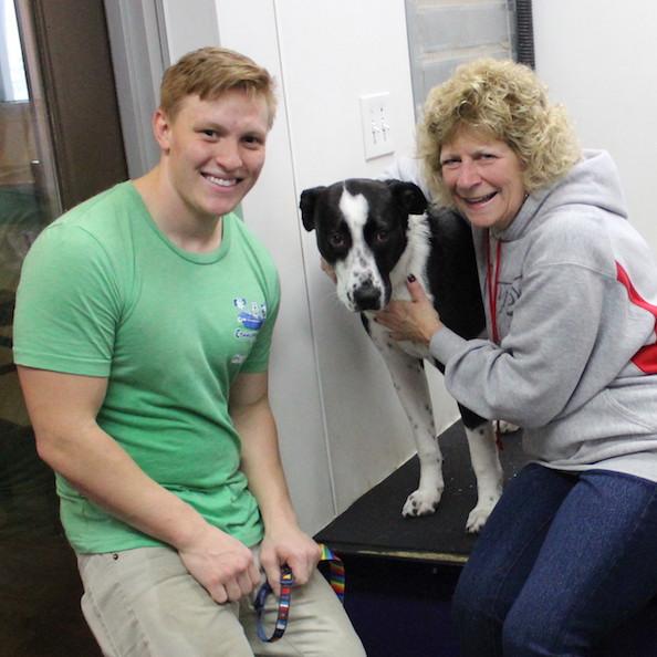 Selfbark community bark dog wash and dog groomer service campaign image solutioingenieria Gallery